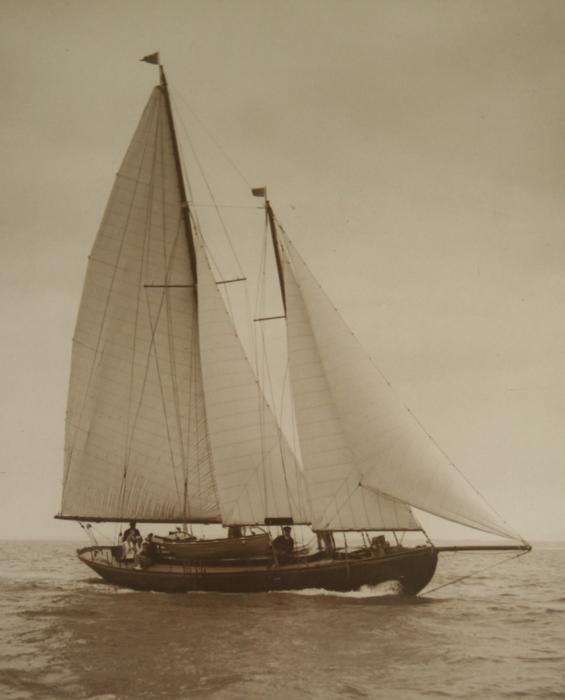 daffodil-1928-1