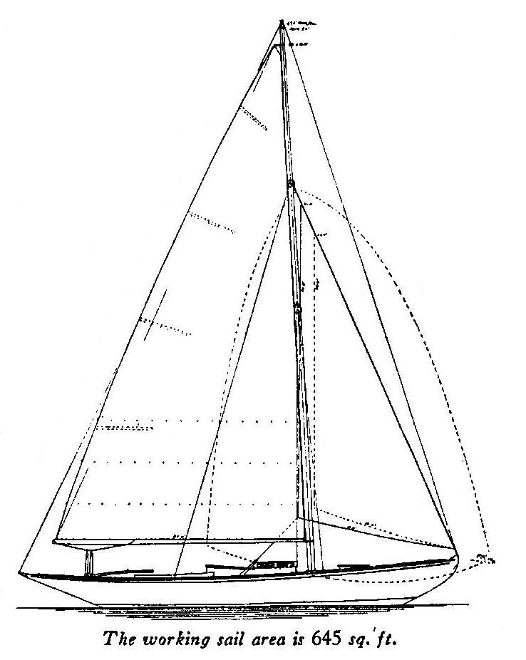 leila-drawing-2