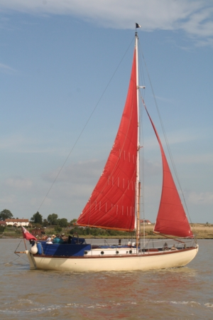 tasia-2007-8